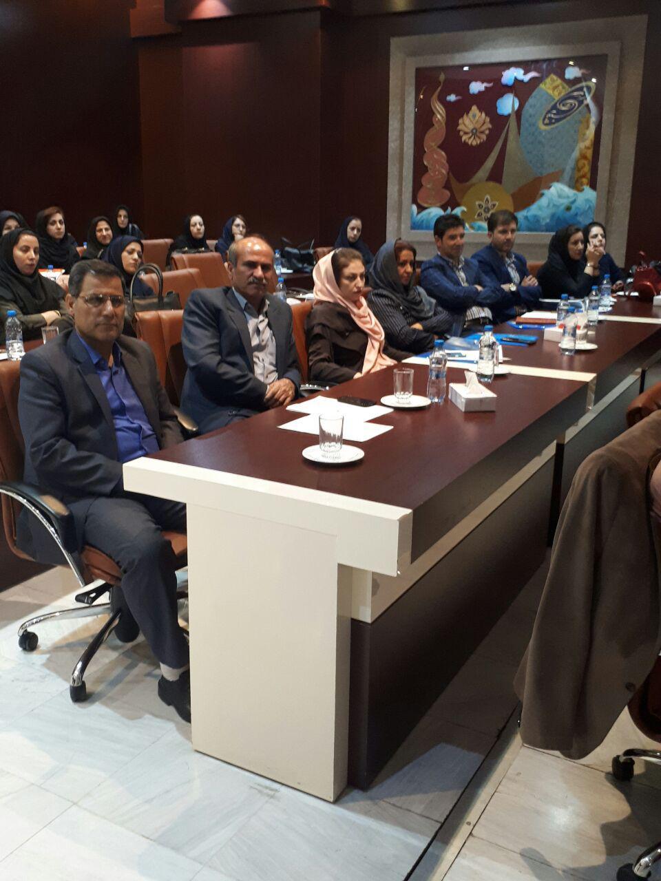 برگزاری سمینار آموزش پرستاری دستگاه های دیالیز  4008s Classic فرزنیوس در مشهد 5
