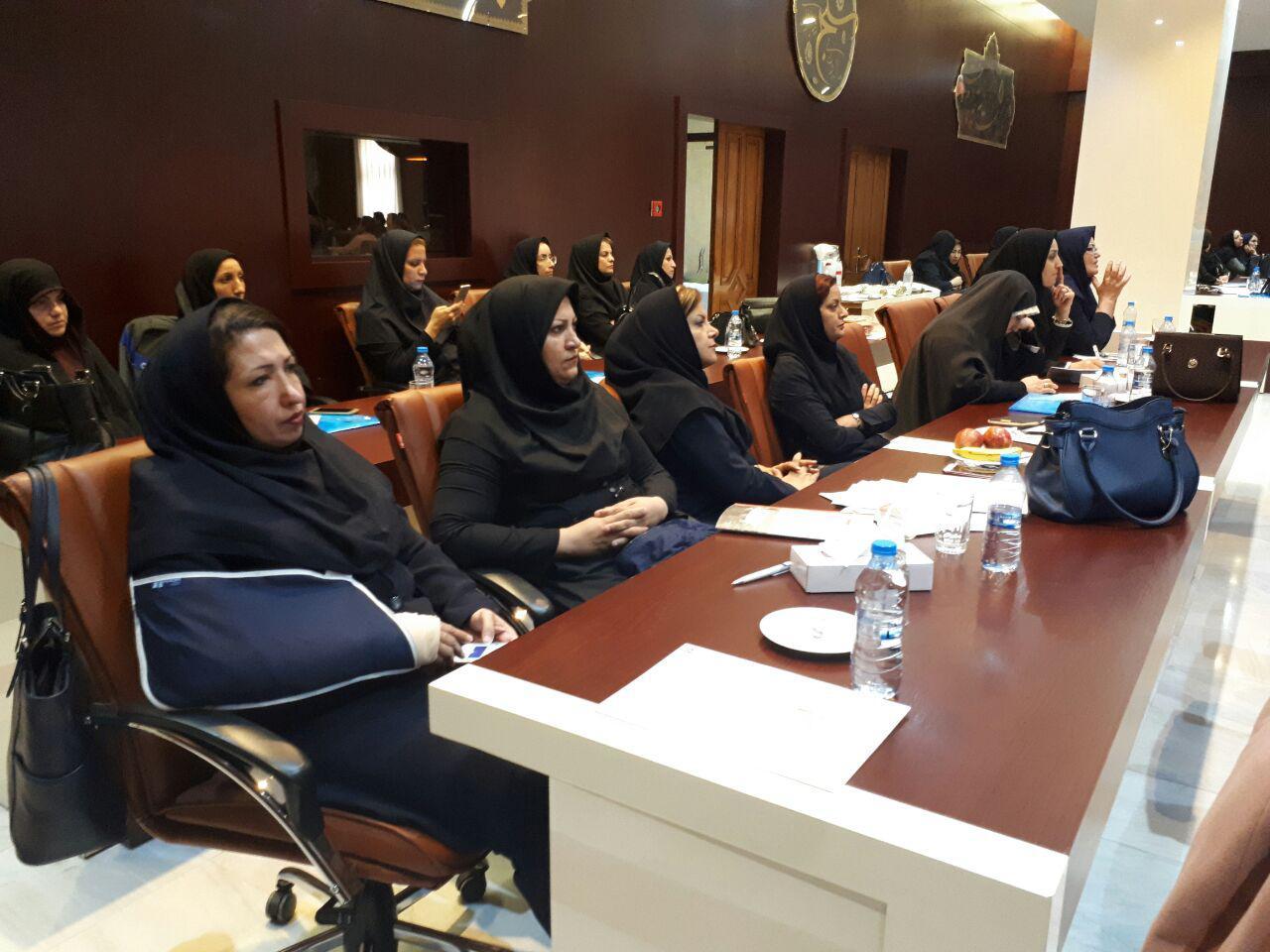 برگزاری سمینار آموزش پرستاری دستگاه های دیالیز  4008s Classic فرزنیوس در مشهد 16